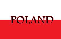 ВНЖ на основании бизнеса в Польше 4