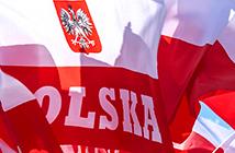Воеводская виза в Польшу 1